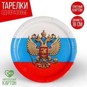 Тарелка бумажная «Россия», 18 см Ош