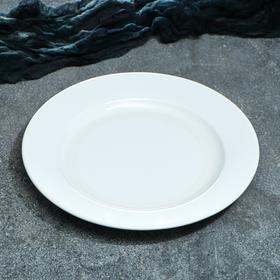 """Тарелка """"Рест"""", 24,5 см, 1 сорт, микс"""