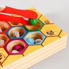 Развивающая игра «Достань и положи пчёлку» 4,5х14,5х20 см - Фото 2