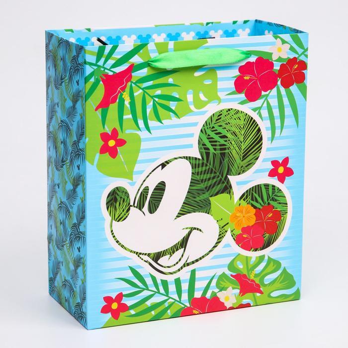 Пакет ламинат вертикальный Mickey, Микки Маус, 23х27х11,5 см
