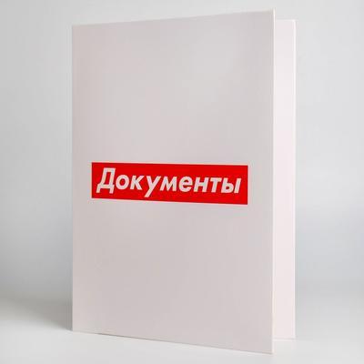 Папка для семейных документов «Документы», 12 файлов, 4 комплекта