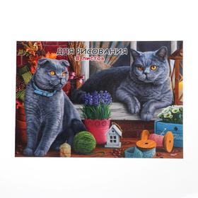 Эскизник А4, 8 листов «Коты на подоконнике», бумажная обложка, блок 100 г/м2 Ош