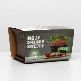 Набор для выращивания микрозелени - Брокколи Ош