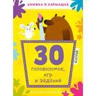 КСП19. Книжка в кармашке. 30 головоломок, игр и заданий