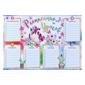 Плакат 'Расписание уроков' птичка, цветы, А4 Ош