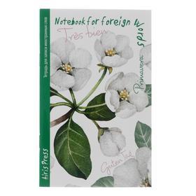 Тетрадь для записи иностранных слов А6 «Жасмин», 32 листа, обложка мелованный картон, глянцевая ламинация