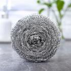 Губка для мытья посуды металлическая Raccoon, спираль оцинкованная, 30 гр - Фото 1