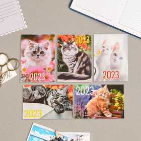Карманный календарь 'Коты - 1' 2022 год, 7 х 10 см, МИКС Ош