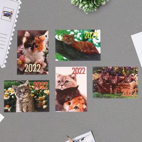 Карманный календарь 'Коты - 2' 2022 год, 7 х 10 см, МИКС Ош