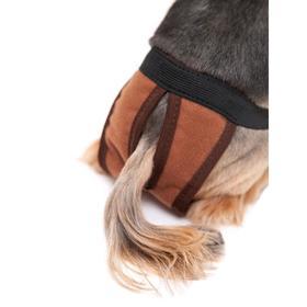 Трусы для собак многоразовые, S (обхват талии 28-44 см, глубина 29 см), коричневые