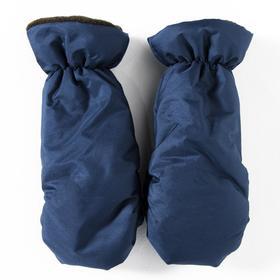 Варежки детские, цвет синий (2-3 года)