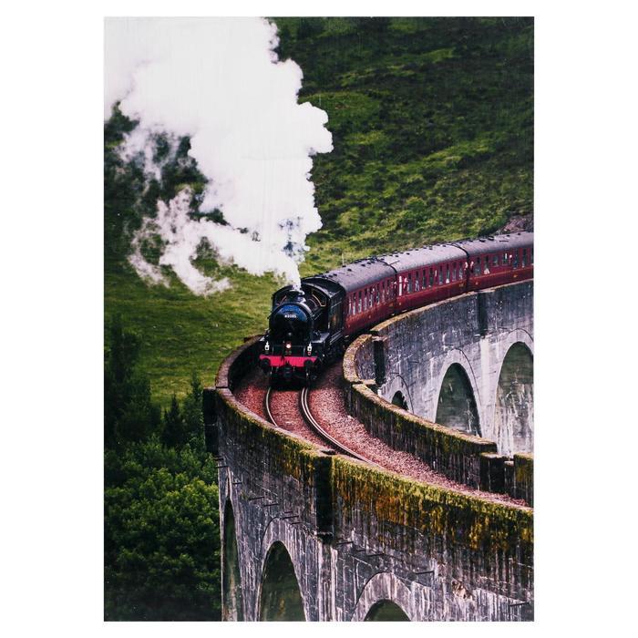 Картина Поезд 2535 см
