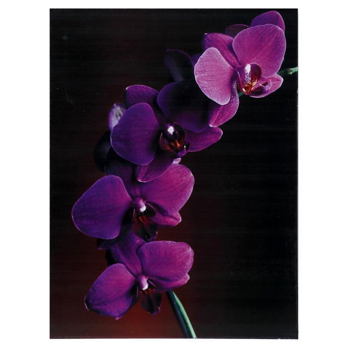 Картина Орхидея 3040 см