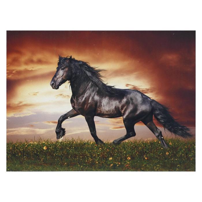 Картина Лошадь 3040 см