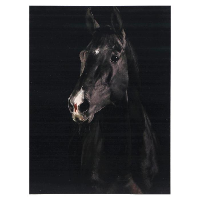 Картина Черный конь 3040 см