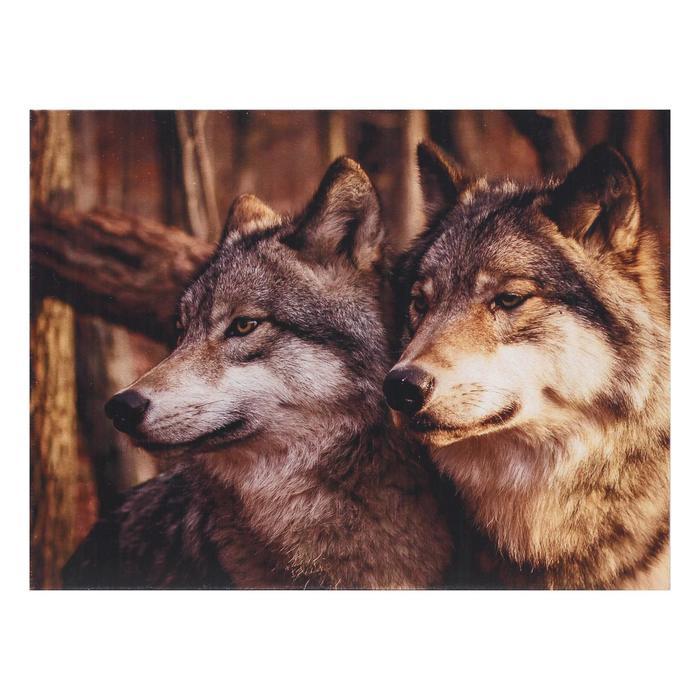 Картина Пара волков 3040 см