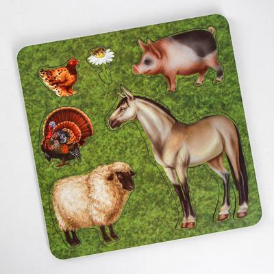 Рамка-вкладыш «Домашние животные. Конь» - Фото 1