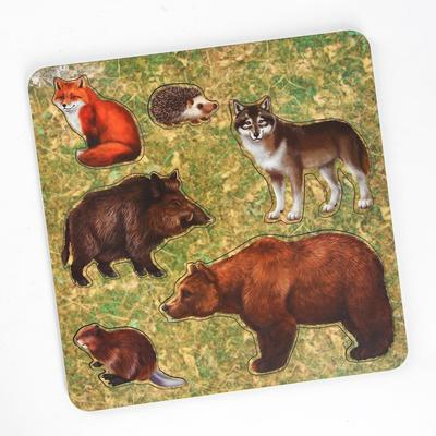 Рамка-вкладыш «Дикие животные. Медведь» - Фото 1