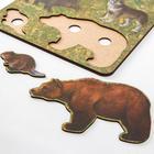 Рамка-вкладыш «Дикие животные. Медведь» - Фото 2