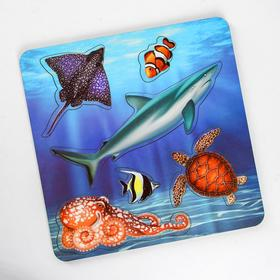 Рамка-вкладыш «Морские обитатели. Акула»