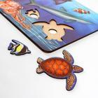 Рамка-вкладыш «Морские обитатели. Акула» - Фото 2