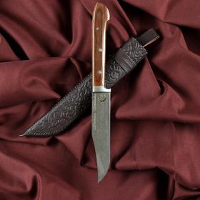Нож Пчак Шархон - малый, текстолит, гюльбанд олово, клинок 13-14 см