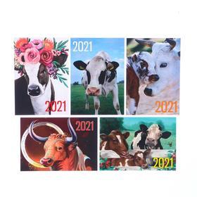 Карманный календарь 'Символ года - 5' 2021 год, 7 х 10 см, МИКС Ош