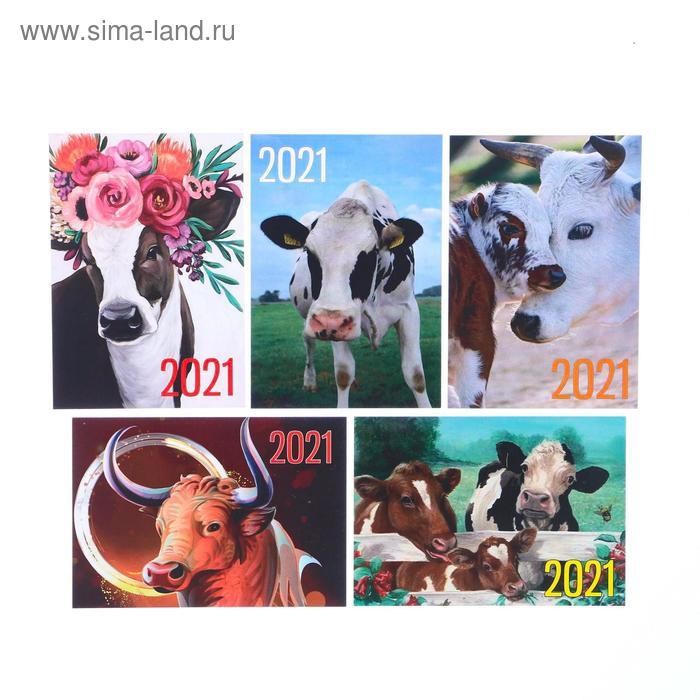 "Карманный календарь ""Символ года - 5"" 2021 год, 7 х 10 см, МИКС"