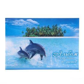 Альбом для рисования А4, 40 листов на скрепке Dolphins Story, обложка мелованный картон, ВД-лак, блок офсет 100 г/м2, МИКС