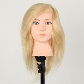 Голова учебная, натуральный волос, 30 см, без штатива, цвет блонд Ош