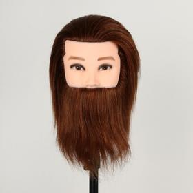 Голова учебная мужская, натуральный волос, 20 см, без штатива, цвет тёмно-русый Ош