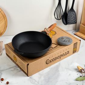 Сковорода чугунная литая, 240 х 60 мм, с деревянной ручкой, премиум набор