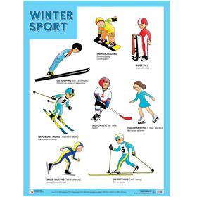 Плакат. Английский язык. Зимние виды спорта. Winter sport.