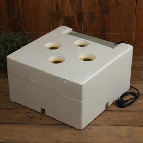 Инкубатор бытовой, на 60 яиц, автоматический переворот, 220 В, с кормушкой, поилкой, овоскопом, NIKA Ош