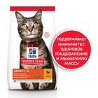 Сухой корм Hill's SP для кошек, поддержание жизненной энергии и иммунитета, курица, 300 г
