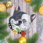 Маска карнавальная «Собака», виды МИКС