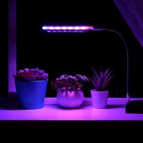 Светильник мини, для растений, от USB, 3 Вт, в комплекте переходник на гибкой ножке Ош