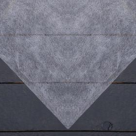 Материал укрывной, 1,6 × 10 м, плотность 25, с УФ-стабилизатором, белый Ош