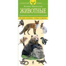 Животные. Определитель животных русских лесов и полей, Митителло К.Б. Ош