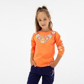 Свитшот для девочки, цвет коралловый, рост 92 см Ош