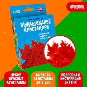 Набор для творчества «Лучистые кристаллы», цвет красный