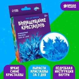 Набор для творчества «Лучистые кристаллы», цвет синий
