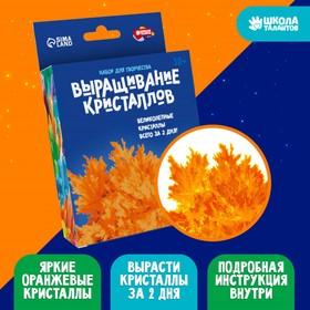 Набор для творчества «Лучистые кристаллы», цвет оранжевый