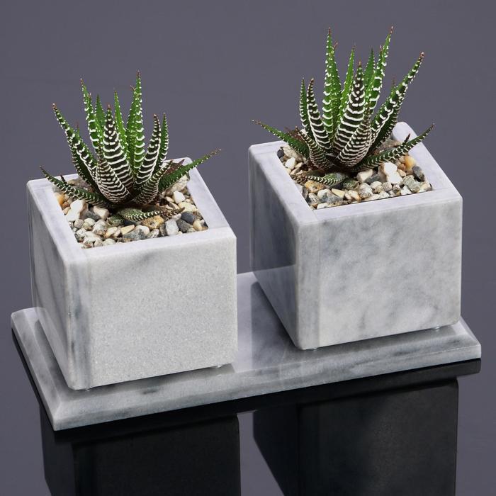 Горшки для цветов Суккулент,2 шт. на подставке с магнитами, мрамор, 7,5х16х7,5 см