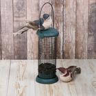 Кормушка для птиц «Бункер», 9,5 × 19,5 см, для крупнозернового корма - Фото 4