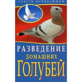 Разведение домашних голубей. (Советы начинающим). Каминская Е.А., Вальтер В.Ю. Ош