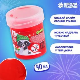 Слайм «Енотик с подарком», красный, 40г