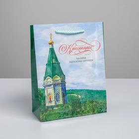 Пакет вертикальный ламинированный «Красноярск» MS, 18 х 23 х 8 см Ош