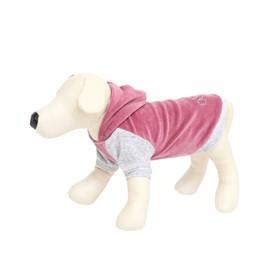 Толстовка с капюшоном Osso для собак, велюр, размер 22 (ДС 22, ОГ 32-34 см), розовая Ош
