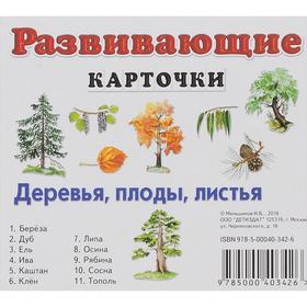 Развивающие карточки. Деревья, плоды, листья